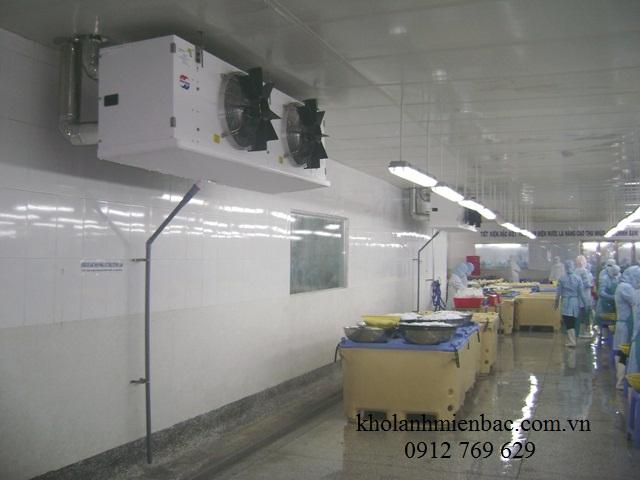 Lắp đặt kho lạnh cho thuê tại Hải Phòng