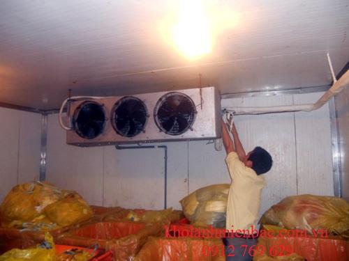 Lắp đặt kho lạnh nông sản tại hà nội