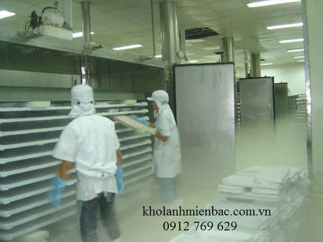 Lắp đặt kho lạnh cấp đông tại Hà Nội