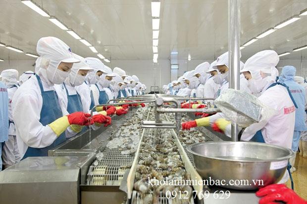 Dự án lắp đặt kho lạnh bảo quản thủy sản